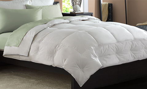 Read Our Bedding Blog Pacific Coast Bedding