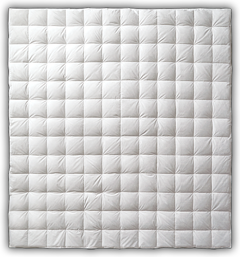 Learn more about the AllerRest Down Blanket
