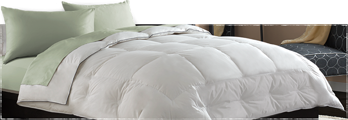 Allergy Pillow Case Best