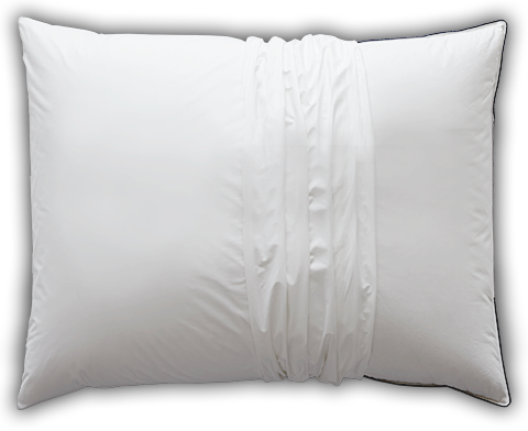 Learn more about the AllerRest Pillow Protector