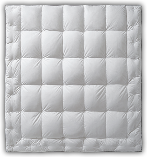 Learn more about the Luxury White Goose Down Comforter