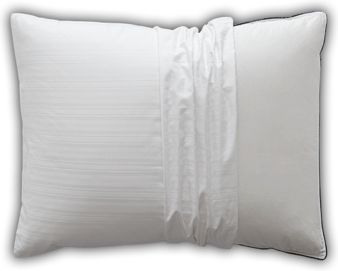 Learn more about the Luxury Pillow Protector