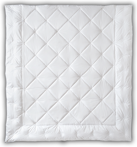 Learn more about the Light Warmth Deluxe Down Comforter