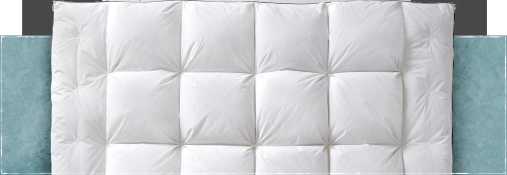 Pillow Sizes Header