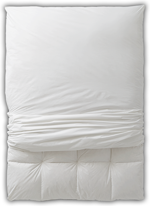 Learn more about the Pacific Coast Feather AllerRest® Mattress Topper Protector