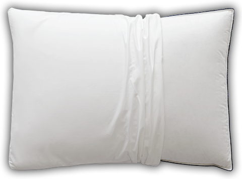 Learn more about the Gusset Pillow Protector