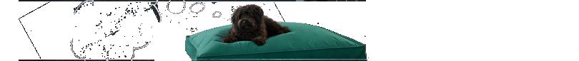 20% off dog beds