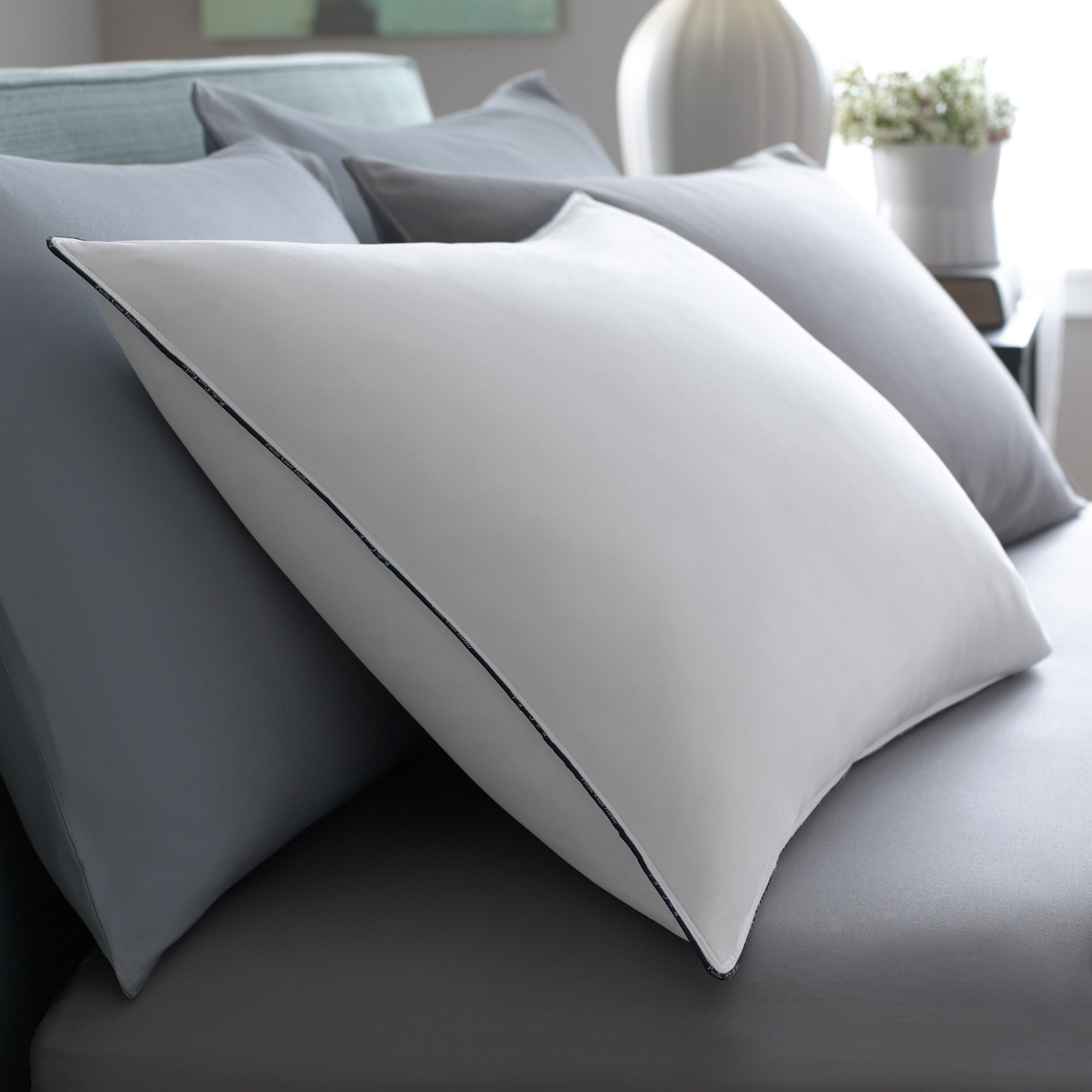 Feather Best Pillow Pacific Coast Bedding