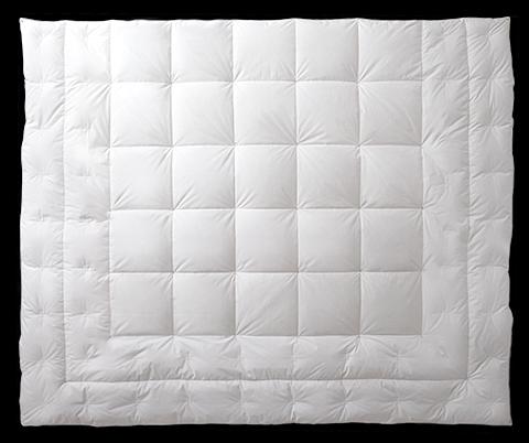 Grand Down Comforter Pacific Coast Bedding